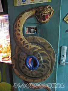 ヘビの血圧計