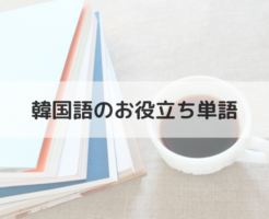 韓国語のお役立ち単語(カテゴリー)_アイキャッチ画像